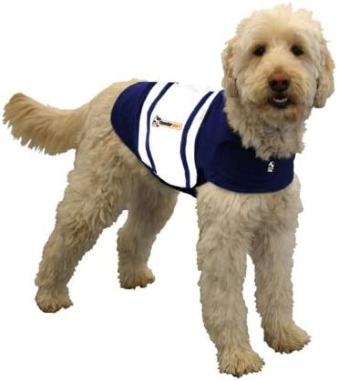 ThunderShirt Price reduction Rugby Dog Topics on TV Jacket Anxiety