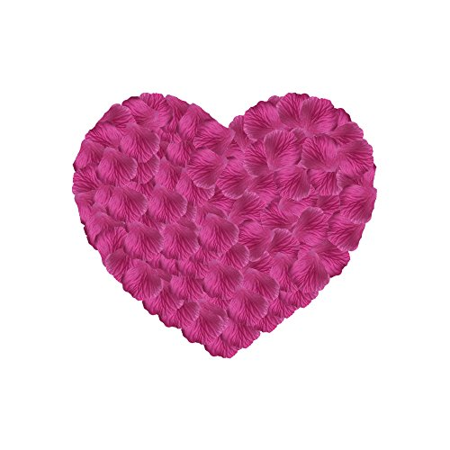 Neo LOONS 1000 Pcs Artificial Silk Rose Petals Decoration Wedding Party Color Fuchsia