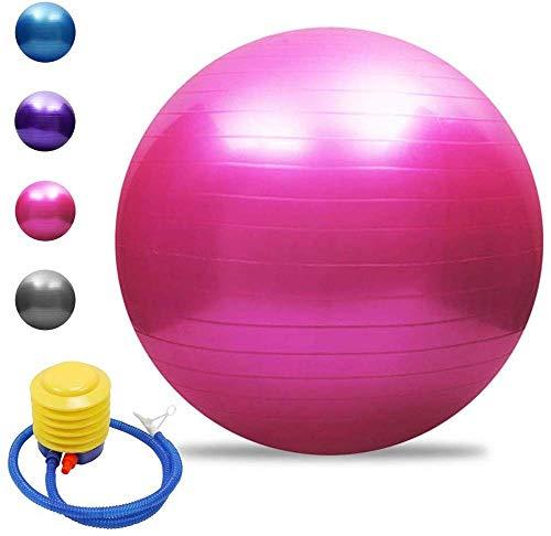 Fitness Mad Studio 500 Kg Pro 65 cm Swiss Exercice Yoga Gym Poids Entrainement Balle