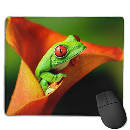 Alfombrilla de ratón Green Frog Funny Logo Rectangular Mousepad Antideslizante Gaming Mouse Pad Mouse Mat 25X30CM