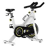 ZCYXQR Bicicleta estática Bicicleta silenciosa para el hogar Equipo de Fitness y Deportes en Interiores Bicicleta Fija de Fitness Bicicleta de Ejercicio Vertical (Deporte de Interior)