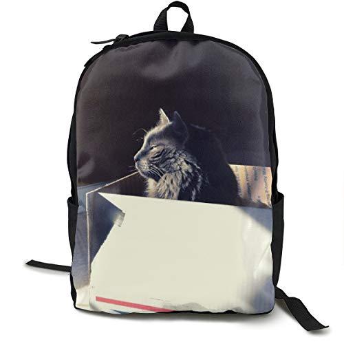 Katzen-Box Sit Shade Shelter Schulrucksack Schultasche Büchertasche Reise Laptop Rucksack Casual Daypack für Kinder Studenten Erwachsene