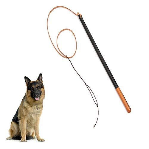 Kylewo Haustier Leder Peitsche für Hunde Haustier Training,Übung Professional