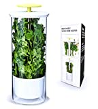 NOVART Premium Fresh Herb Keeper and Herb Storage Container – Glass Savor Preserver for ...