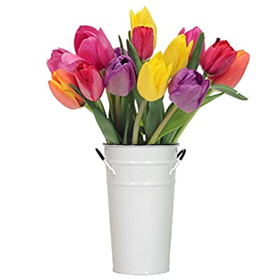 Stargazer Barn - Happy Love Bouquet - 15 Stems of Bright And Vibrant Tulips With Vase - Fresh From Farm from Stargazer Barn