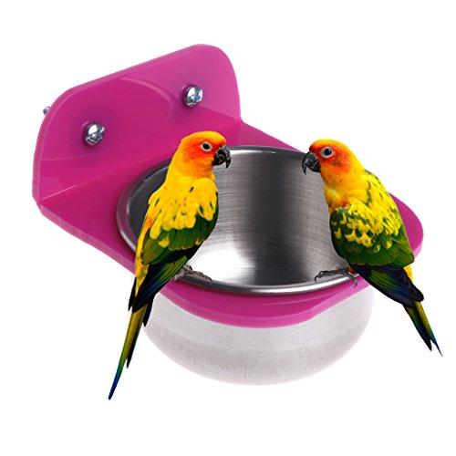 Qiman Acier Inoxydable Nourriture Eau Bol Mangeoire à Oiseaux pour caisses Cages Coop Chien Parrot pour Animal Domestique