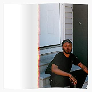 QUAYTAYStore Alternative Cover Jpegmafia Grips- Gift for Home Decor Wall Art Print Poster