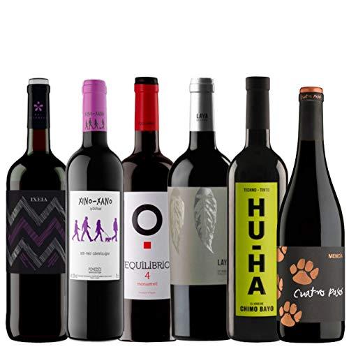 Pack Vino Tinto - Vinos Económicos y sorprendentes - Caja 6 Vinos Tintos