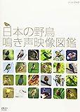 日本の野鳥 鳴き声映像図鑑[NSDS-20706][DVD]