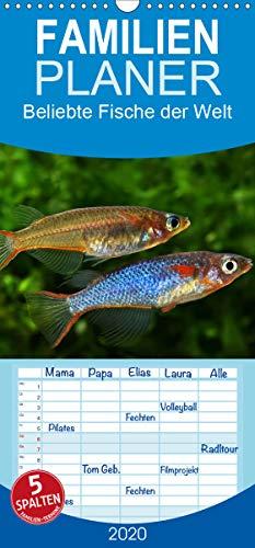 Beliebte Fische der Welt - Familienplaner hoch (Wandkalender 2020 , 21 cm x 45 cm, hoch): Farbenprächtige Süßwasserfische (Monatskalender, 14 Seiten ) (CALVENDO Tiere)