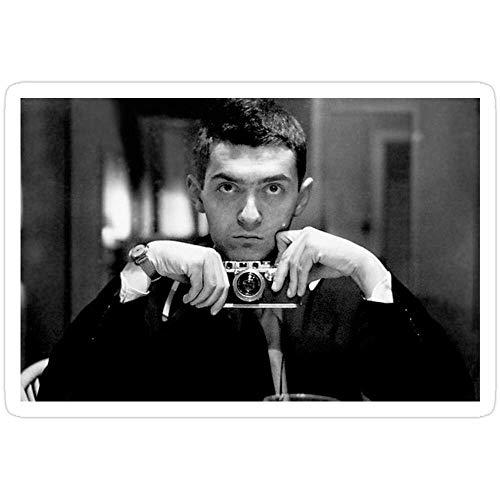DKISEE 3 pegatinas de Stanley Kubrick para ordenador portátil, teléfono, coches, vinilo divertido para ordenadores portátiles, guitarra, nevera, 4 pulgadas