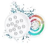 Wasenir 2PCS Luz subacuática, RGB Multi cambio de color impermeable LED luces con ventosa para piscina, acuario, estanque, Fish Tank decoración, luz led sumergible con mando a distancia