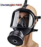 Best Gas Masks - PPWYY Mask Full Face Head Ventilative Biochemical Gas Review