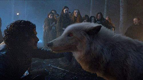 TTbaoz 1000 Teile des Puzzles für Erwachsene Game of Thrones Jon Snow Poster EIN Puzzleset für Kinder Puzzlesets für die Familie |Lernspiel
