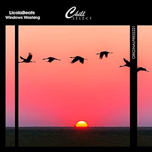 LicolaBeats & Chill Select