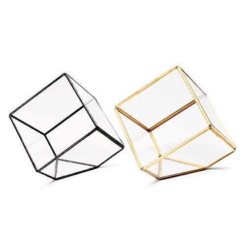 MASUNN Modern Glas Geometrische Terrarium Tafelblad Zuigplanten Inclined Container Varen Mos Bloempot, Black, 1