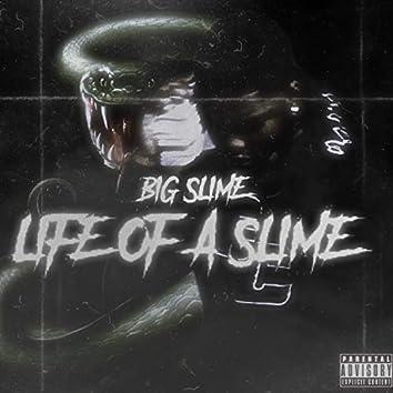 Life of a Slime
