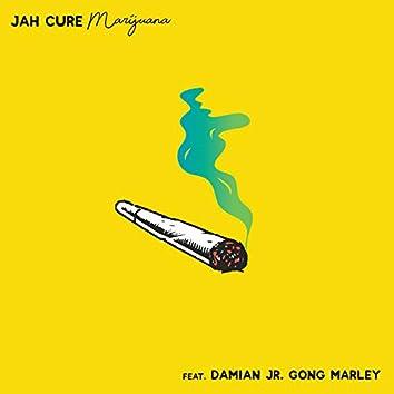 Marijuana (feat. Damian 'Jr. Gong' Marley)