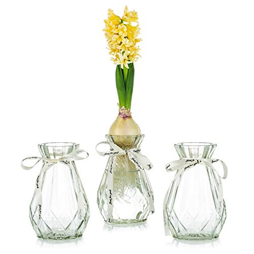 Jarrones Cristal Pequeños Para Flores jarrones cristal  Marca Glasseam