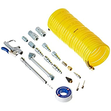 20 Piece Air Tool Accessory Kit, with Air Hose, Blow Gun, Inflation Needles and Air Chuck (Campbell Hausfeld MP604103AV)