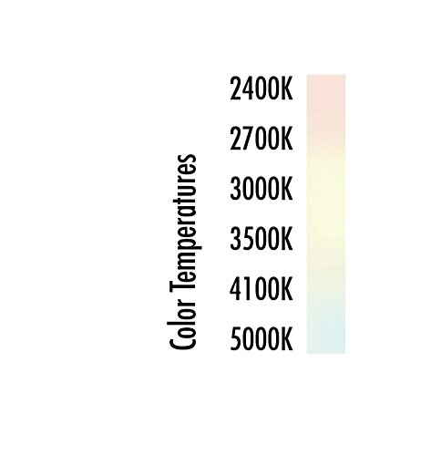 TCP 60W Equivalent CFL Mini Spring A Lamp, Daylight (5000K) Spiral Light Bulb (10 Pack)