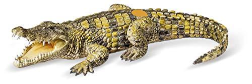 tiptoi® Krokodil