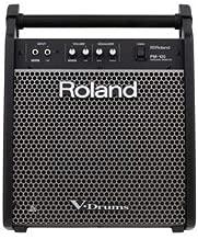 Roland Drum Monitor (PM-100)