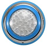 Dkdnjsk IP68 LED Piscina Luz 54W Lámparas a prueba de agua azul con control remoto Luces de agua de acero inoxidable AC12V Lámpara de pared Lámpara Cambiable Tamaño: 9-12 / W Φ230 * H48 0mm luces bajo