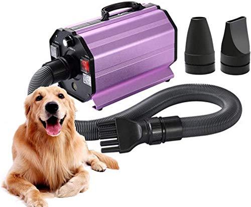 QXIAO Secador de Perro,Secador de Pelo de Perro de Velocidad Ajustable Sin Escalonamientos de 2800 W, Soplador de Aseo para Perros, Pet Hair Force Blower Blaster con Sistema de Calefacción