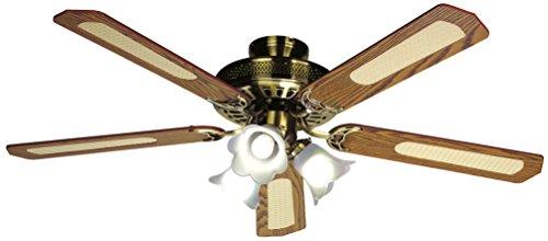 avis ventilateur de plafond professionnel Ventilateur de Plafond Farelek Baleares 132cm