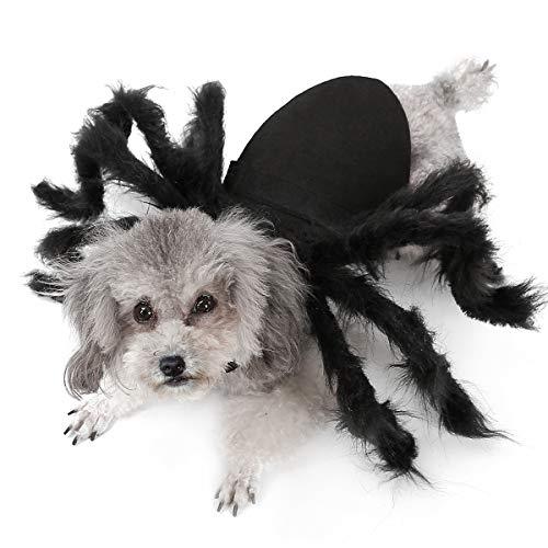 BT Bear Disfraz de Halloween para perro, gato, disfraz de araña, vestido de perro, gato, cosplay, ropa de fiesta (M)