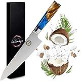 Salimago Damastmesser VG 10 Japanisches Messer Damascus Stahl 67 Lagen [ Ultra scharfes Fleischmesser ] 30cm Kochmesser Profi Messer Küchenmesser Damast | Damast Küchenmesser Top Qualität