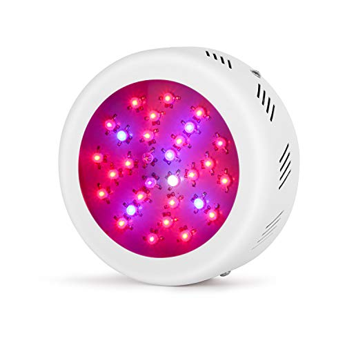 Roledro LED Grow Lights, 300W UFO LED Grow Light for Indoor Plants, Red Blue Spectrum Grow Lamp for Hydroponics, Veg and Flower