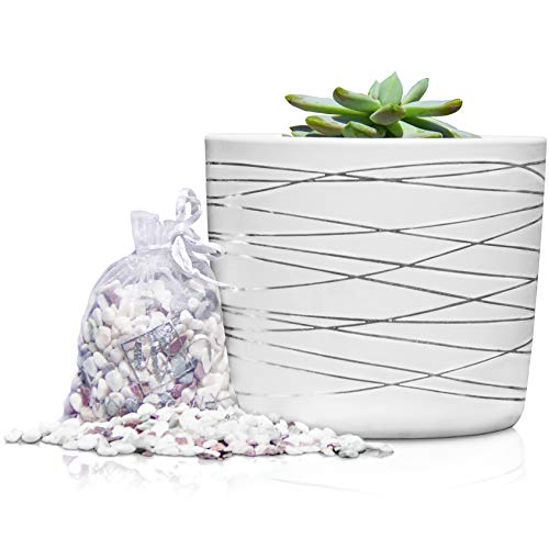 6 Inch Ceramic Plant Pot - Small White Planter with Gold Stripes...