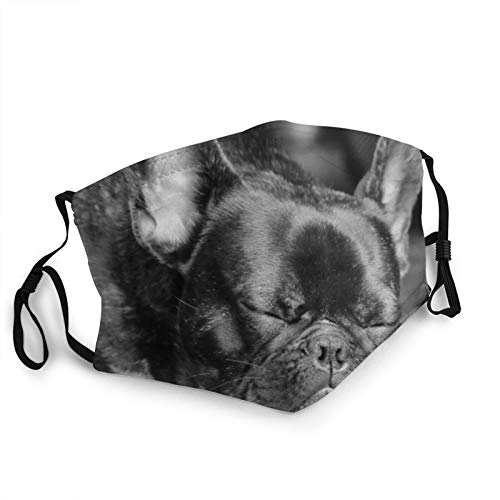 Sleeping French Bulldog Retro Face Mask with Nose Wire Filter Pocket for Men Women Scarf Cover Black