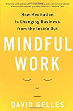 Mindful Work: How Meditation Is Changing Business from the Inside Out (Eamon Dolan)