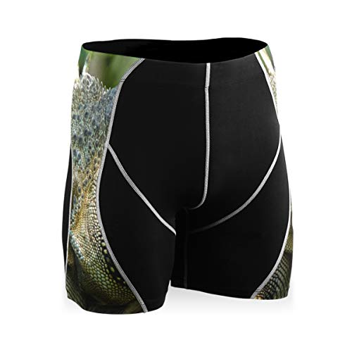 LUPINZ Awesome Reptile Lizards Pantalon de sport Respirant Collants de vélo Confortable - - 34-37