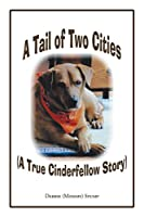 A Tail of Two Cities: A True Cinderfellow Story