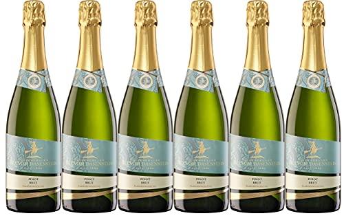 Winzerkeller Hex vom Dasenstein Kappelrodeck traditionelle Flaschengärung Pinot Sekt brut (6 x 0,75L)