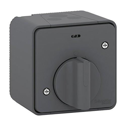 interrupteur temporisé - gris - saillie - mureva styl - schneider electric mur35067