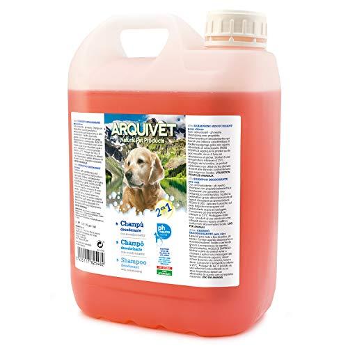 Arquivet 8435117825482 Deodorant Shampoo 2 in 1, 5 l