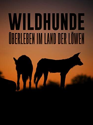 Wildhunde - Überleben im Land der Löwen