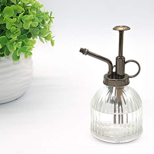 MOAMI Plant Mister - 6.3' Tall Glass Water Spray Bottle with Plastic Top Pump, Glass Watering Spray Bottle Vintage Small Watering Can for House Plants, Garden, Cleaning Solution, Home Dec(Transparent)