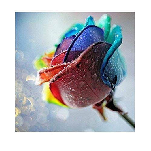 DIY Diamant Malerei,Handarbeit Basteln Voller Diamant Kreuzstich Strass Mosaik Gemälde Raumdekor Wand-Dekor (Colorful Rose)