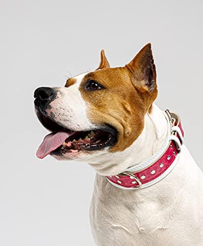 Collar de perro para perros grandes tachonado cuello ancho Doberman pit-bull Staffordshire bullterrier (21-24)