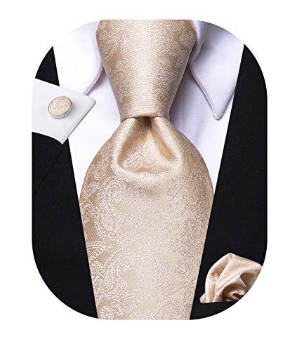 Hi-Tie Champagne Tie Paisley Silk Mens Neckties with Pocket Square Cufflinks