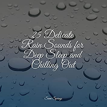 25 Delicate Rain Sounds for Deep Sleep and Chilling Out