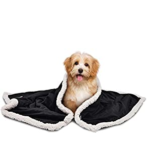 Premium Puppy Sherpa Blankets for Small Dog Cats Kitten | Ultra Soft Flannel Plush Pet Bed Blanket Reversible – 30×45 Inche