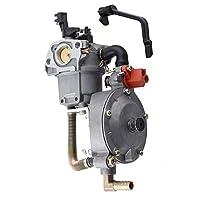 F Fityle 水ポンプの発電機エンジン170F GX200のための二重燃料のキャブレターの炭水化物