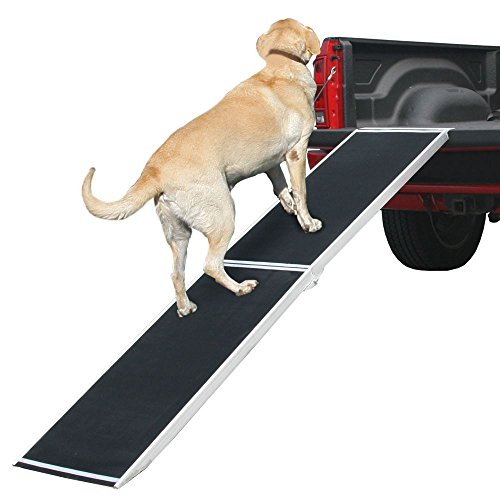 Rage Powersports DR-06XW 72' Lightweight Extra Wide Folding Aluminum Pet Ramp